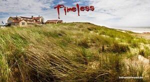 Timeless (5) Finale